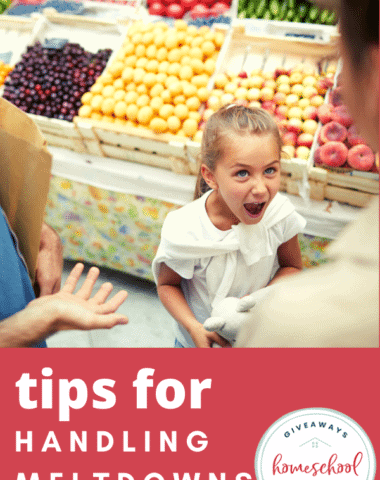 Tips for Handling Meltdowns. #handlingmeltdowns #handlingtantrums #tipsformeltdowns