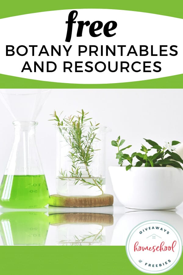 FREE Botany Printables and Resources with images of plants and beakers.