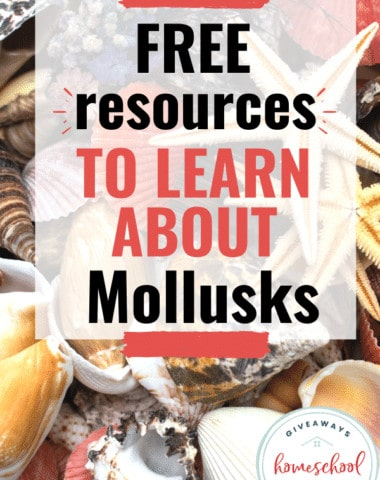 Free Resources to Learn About Mollusks. #molluskprintables #molluskresources #molluscprintables #molluscresources #molluscaprintables #molluscaresources