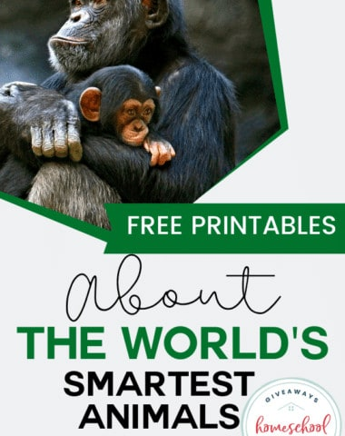Free Printables About the World's Smartest Animals. #smartestanimals #worldssmartestanimals