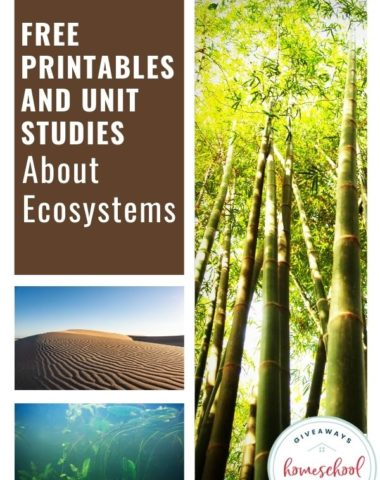 Free Printables and Unit Studies About Ecosystems. #ecosystemprintables #ecosystemresources #ecosystemunitstudies