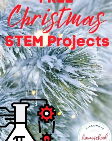 Free Christmas STEM Projects. #ChristmasSTEM #STEMholidays #Christmasprojects #STEMprojects #holidaySTEM