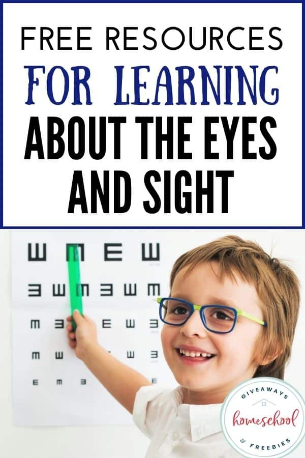 Free Resources for Learning About the Eyes and Sight