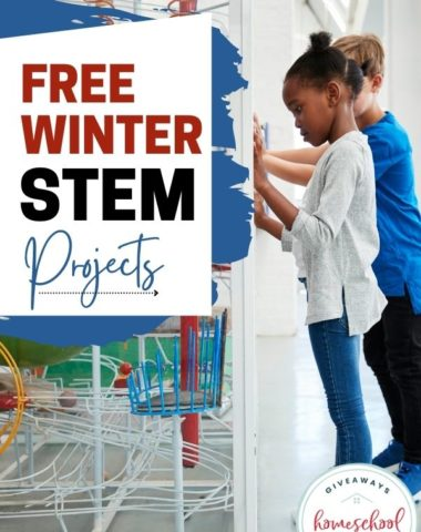 Free Winter STEM Projects. #STEMprojectsforwinter #winterSTEMprojects #winterSTEAM #STEAmwinterprojects