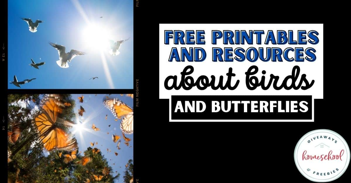 FREE Printables and Resources About Birds and Butterflies