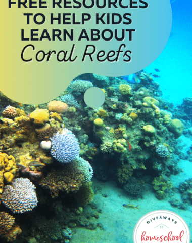 Free Resources to Help Kids Learn About Coral Reefs. #coralreefs #coralreefresources #coralreefprintables