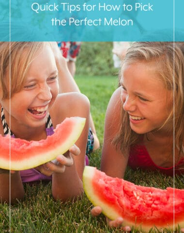 Quick Tips for How to Pick the Perfect Melon