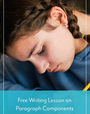 Free Writing Lesson on Paragraph Components